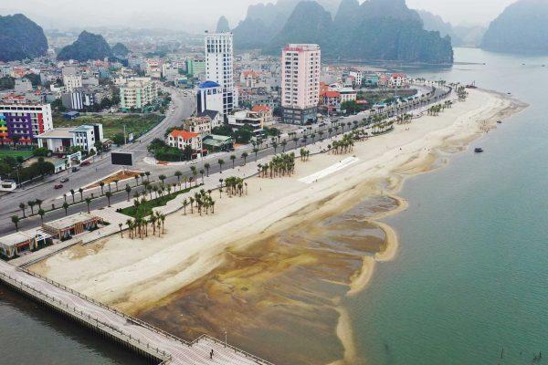 Dịch vụ SEO web chuyên nghiệp tại Quảng Ninh